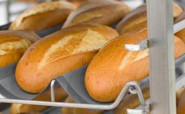 bion-baking